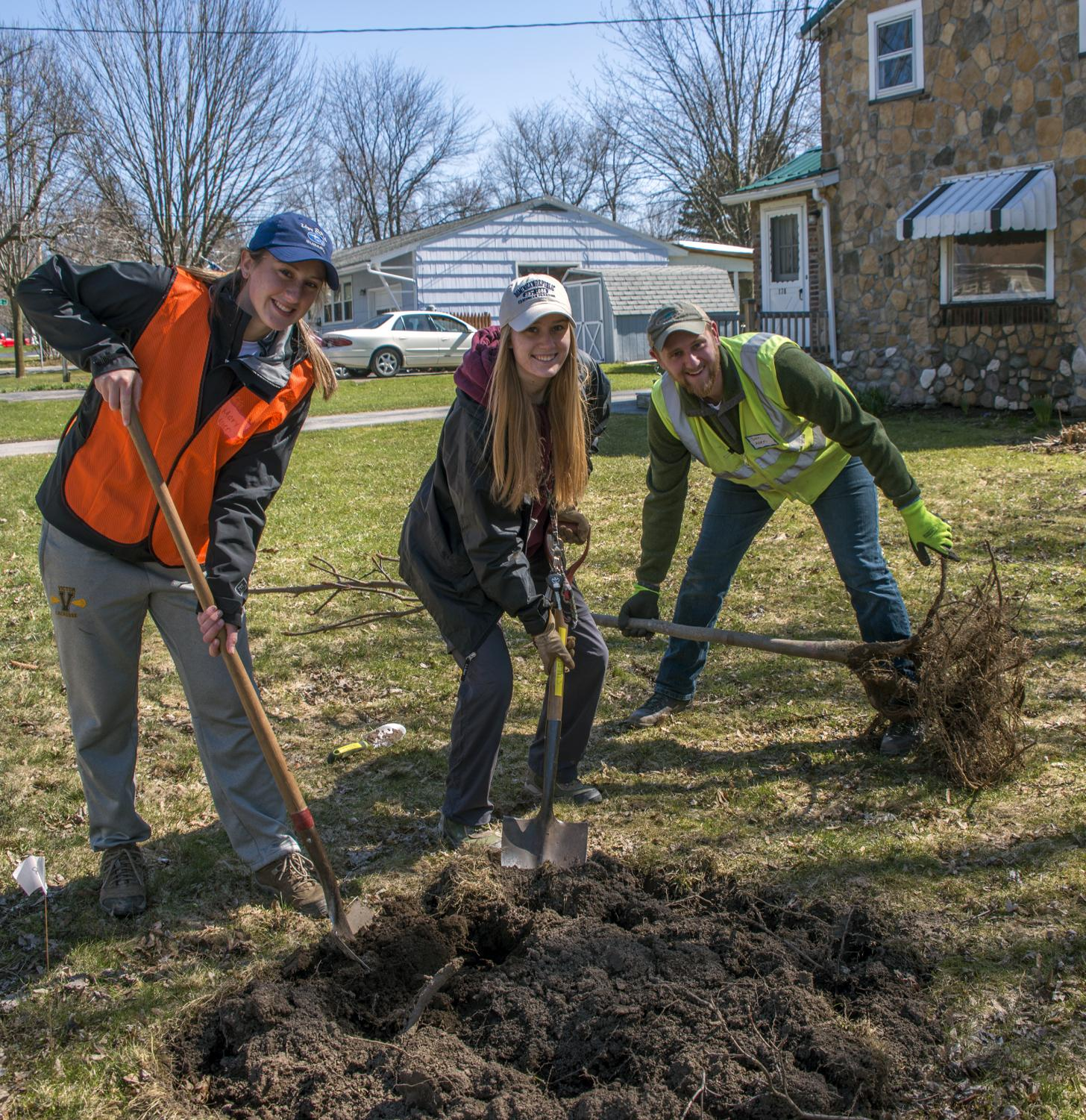 Arbor Day in the village of Victor